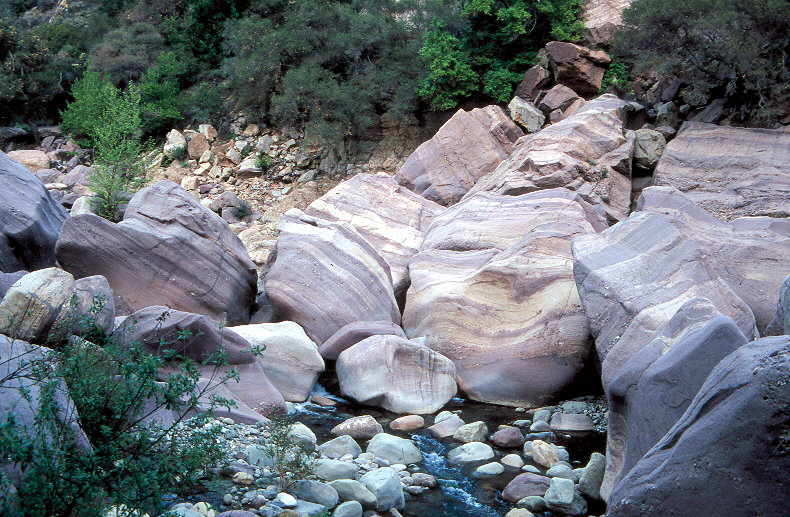 Tar Creek Sespe 15