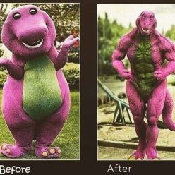 before-after-barney
