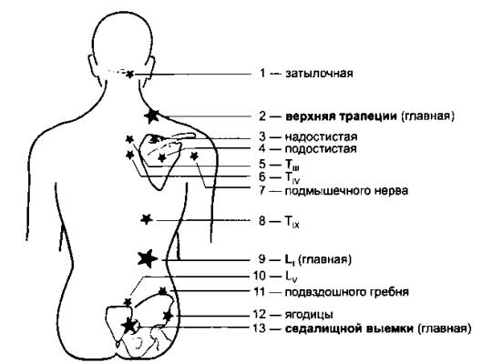 Рис. 32. Главные точки Кнапа (по R. Perronneaud-Ferre, 1999)