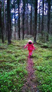 Pieni punanuttu, ilves reitti, luonto, lasten kanssa, vaellus, vuokramökki