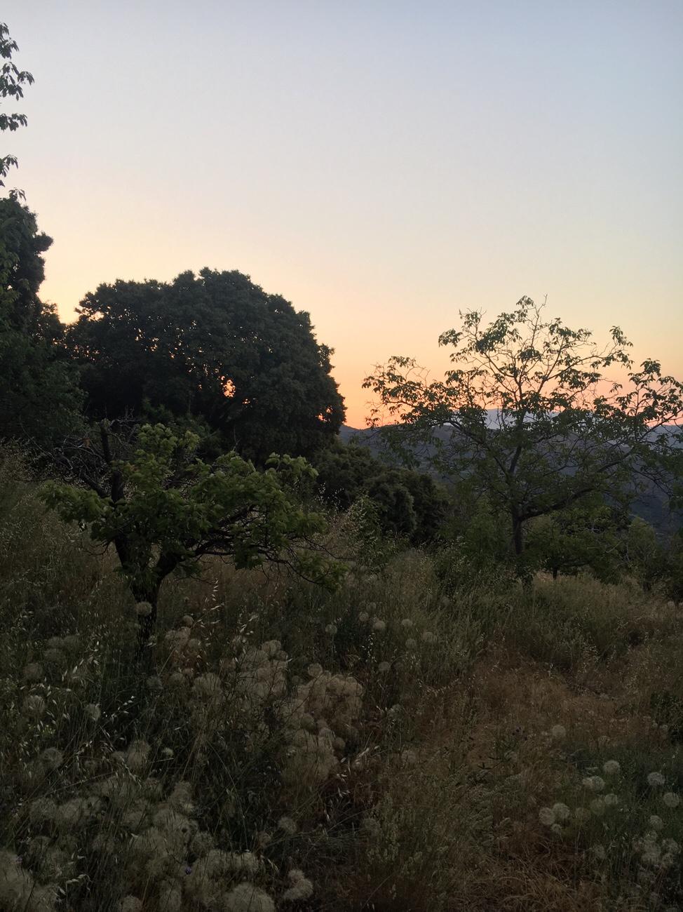 Auringon nousu, La Taha