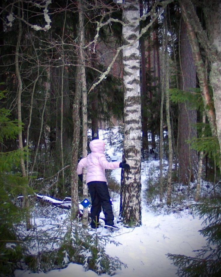 Suomen luonto, metsään, Kansallispuisto, Teijon kansallispuisto, visit Salo