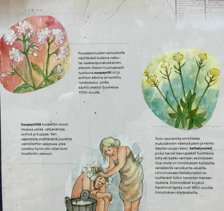 Lappeenranta, linnoitus, kulttuuri- ja luontopolku, opastaulu