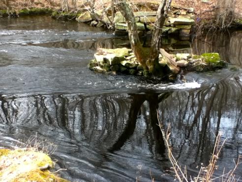 polly coon bridge site