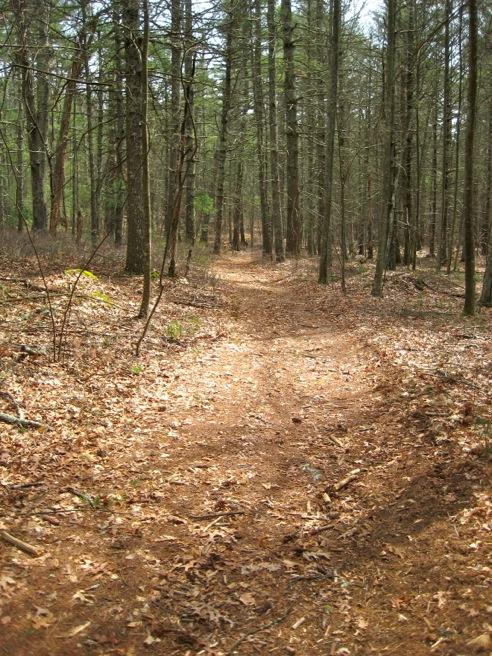 dove crest trail