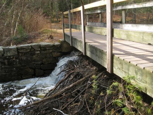 bridge at upper pond