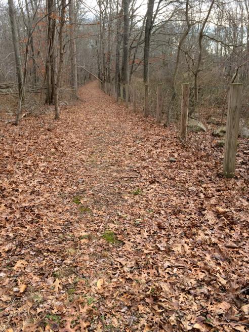 tomaquag trail