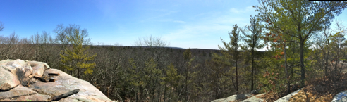 panorama from rattlesnake ledges