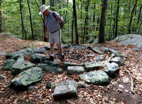 al brown of the dpnc in the stone circle