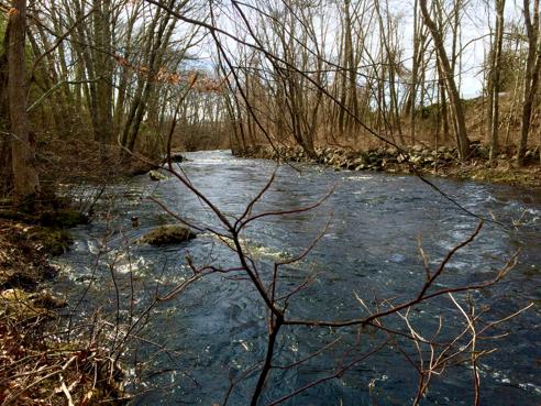Branch River
