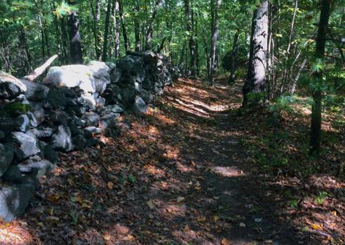 Goat Hill Trail