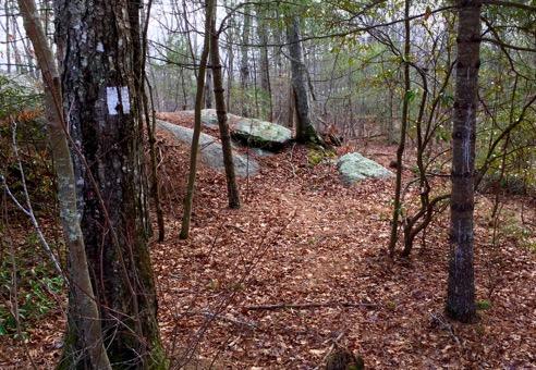 Escoheag Trail Trailhead