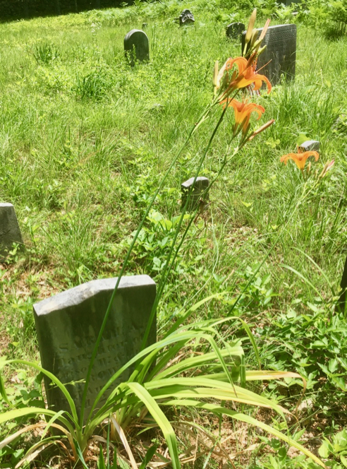 Two-Year-Old's Grave