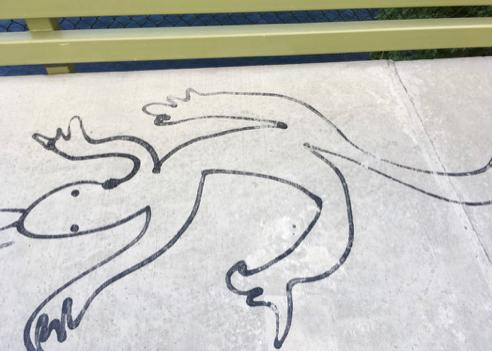 Lizard on the Cheese Bridge