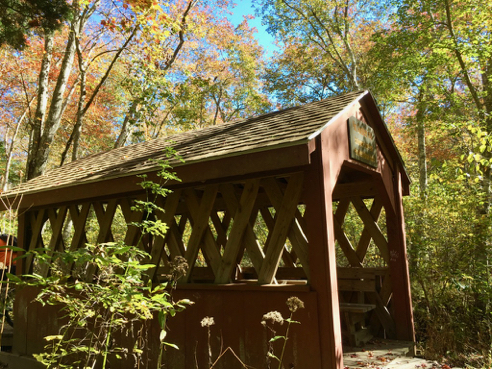 Covered Bridge over the Perry Healey Brook