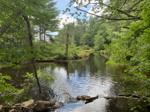 Northern End of Breakheart Pond