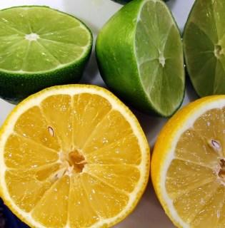 citrus marinade