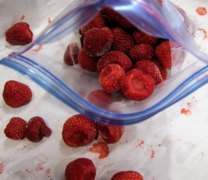 Freezing Strawberries