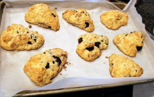 blackberry scones