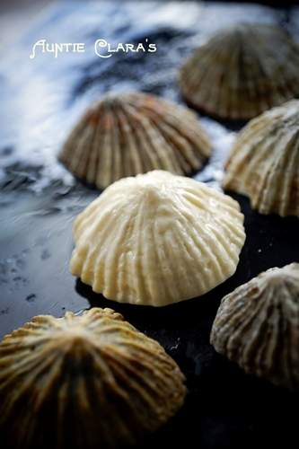 Limpet Soap by Auntie Clara's