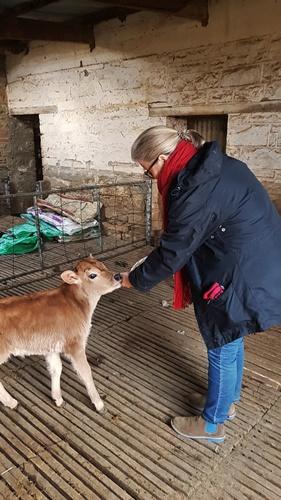 Auntie Clara on bottle feeding duty at Langbaken