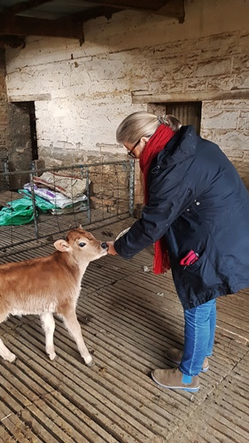 Auntie Clara on bottle feeding duty at Langbaken