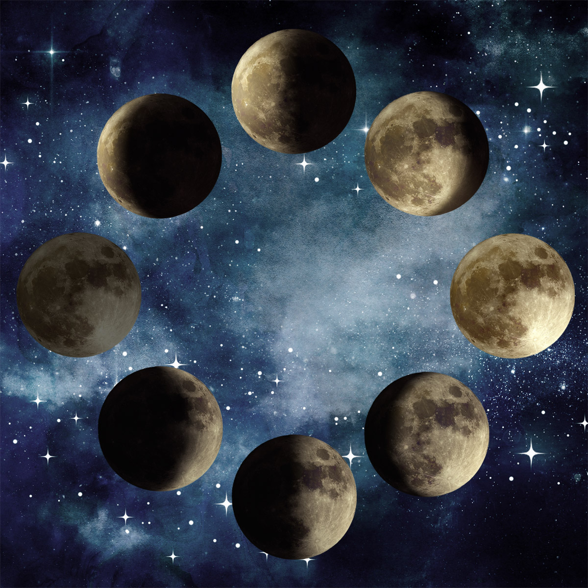 Auntie Moon Signs Phases Seasons