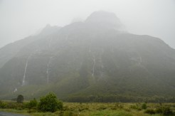 Amazing Mist