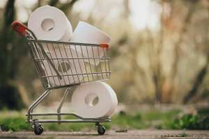 Picture of a mini shopping cart that is loaded with toilet paper.
