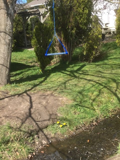 A swing that is suspended over a water-filled ditch.