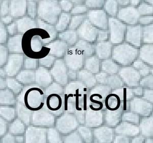 C – Cortisol