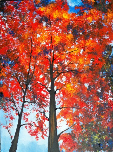 Looking Up at Autumn Red Trees