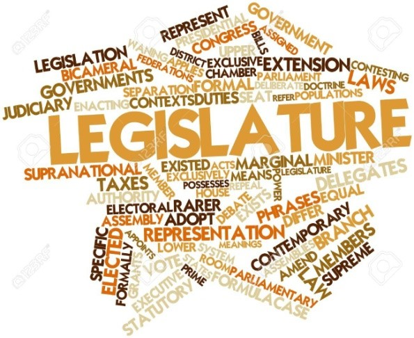 what are the types of legislature