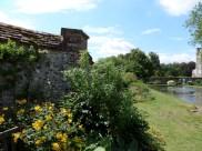 The Master's Garden