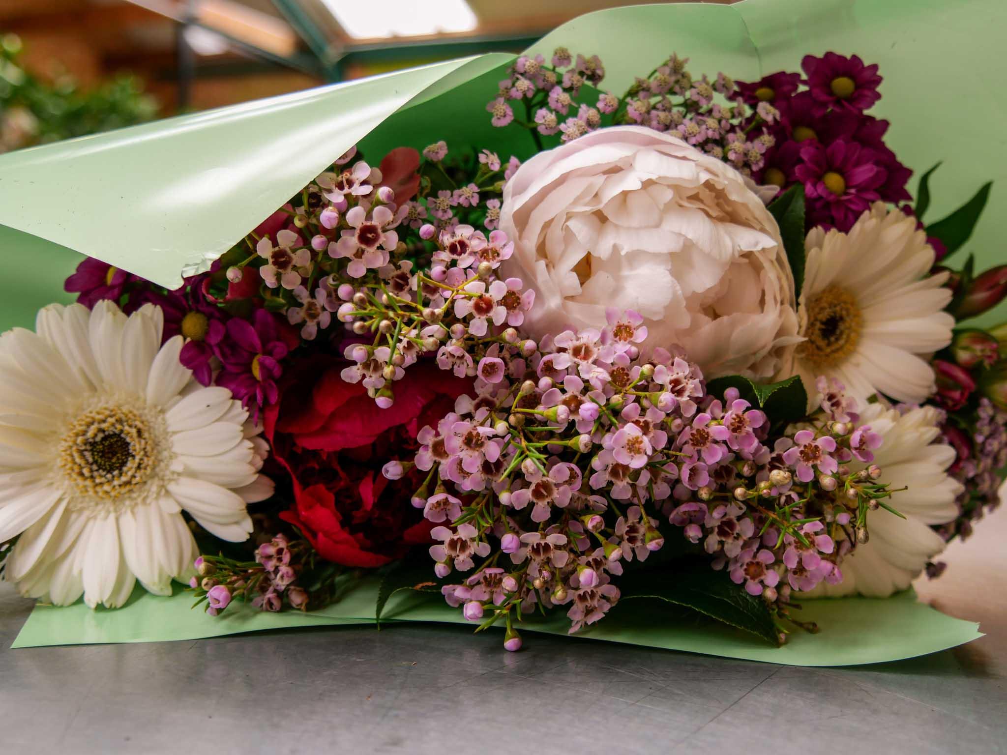 Bouquet de fleur germini pivoine