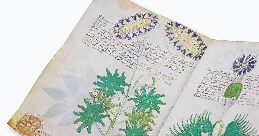 Il manoscritto Voynich, un rompicapo lungo un secolo