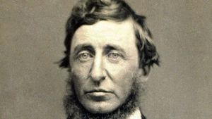 Le lezioni di Henry David Thoreau: per l'ambiente non basta protestare