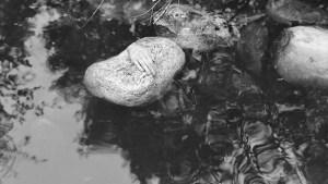 Il massacro del lago di Bodom: un mistero lungo sessant'anni