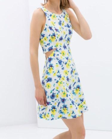 0a5qmg-l-610x610-dress-zara+trf-zara-zara+dress-www+zara+com-trf-skater+dress-summer+dress-floral-258438-floral+dress-summer+outfits-cutout-cutout+dress-cute+dress-girly+dress-2014+summer-fashion