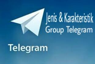 Jenis dan Karakteristik Group Telegram