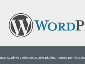 Seguridad en WordPress, htaccess, wp-config y functions, top 10 consejos