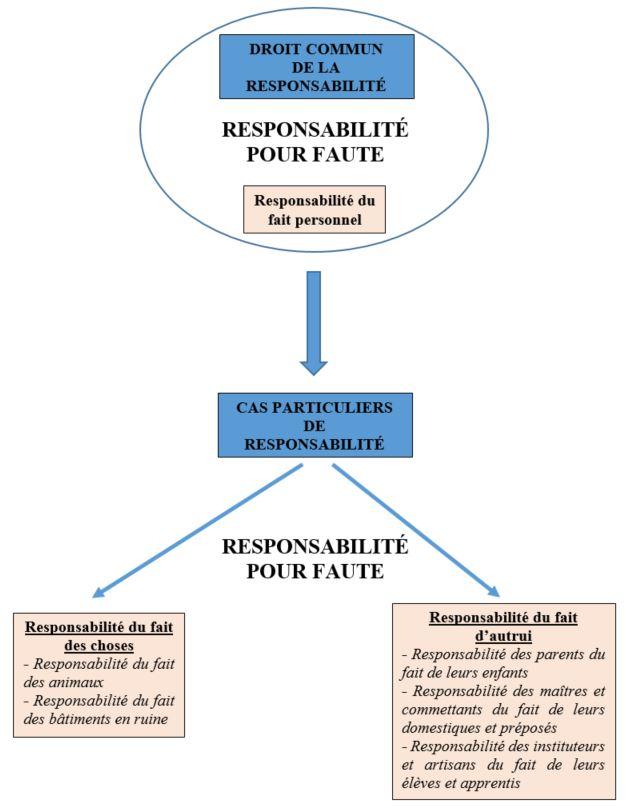 Responsabilité Du Fait D Autrui : responsabilité, autrui, Responsabilité, Personnel, Bamdé, Bourdoiseau