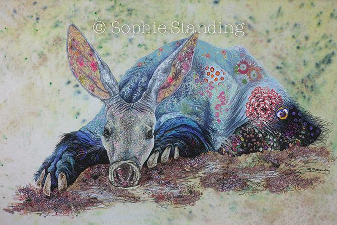 SophieStanding, Sunrise Aardvark