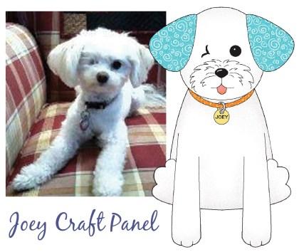 the Joey Craft Panel