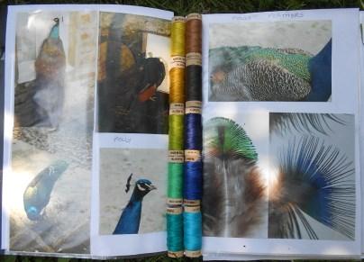 PollyandthePeacock Collection_1000