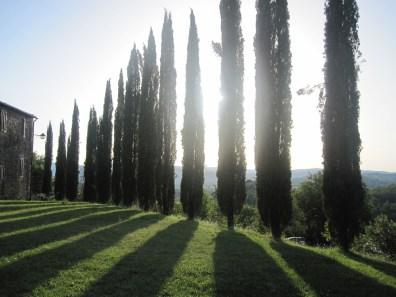 Tuscany2_1000