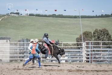 Bull_Riding_34