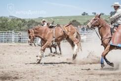 Saddle Bronc_7