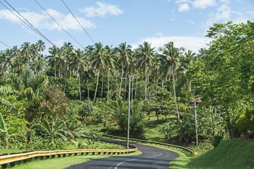 Samoa_Road_3