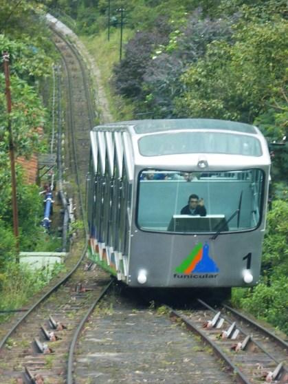 Bogota (12)